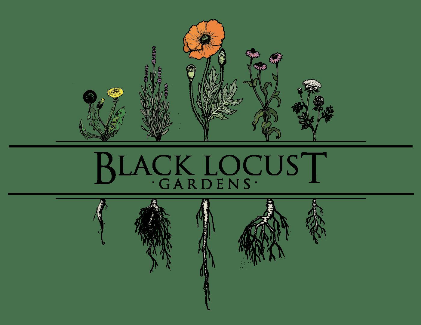 Black Locust Gardens