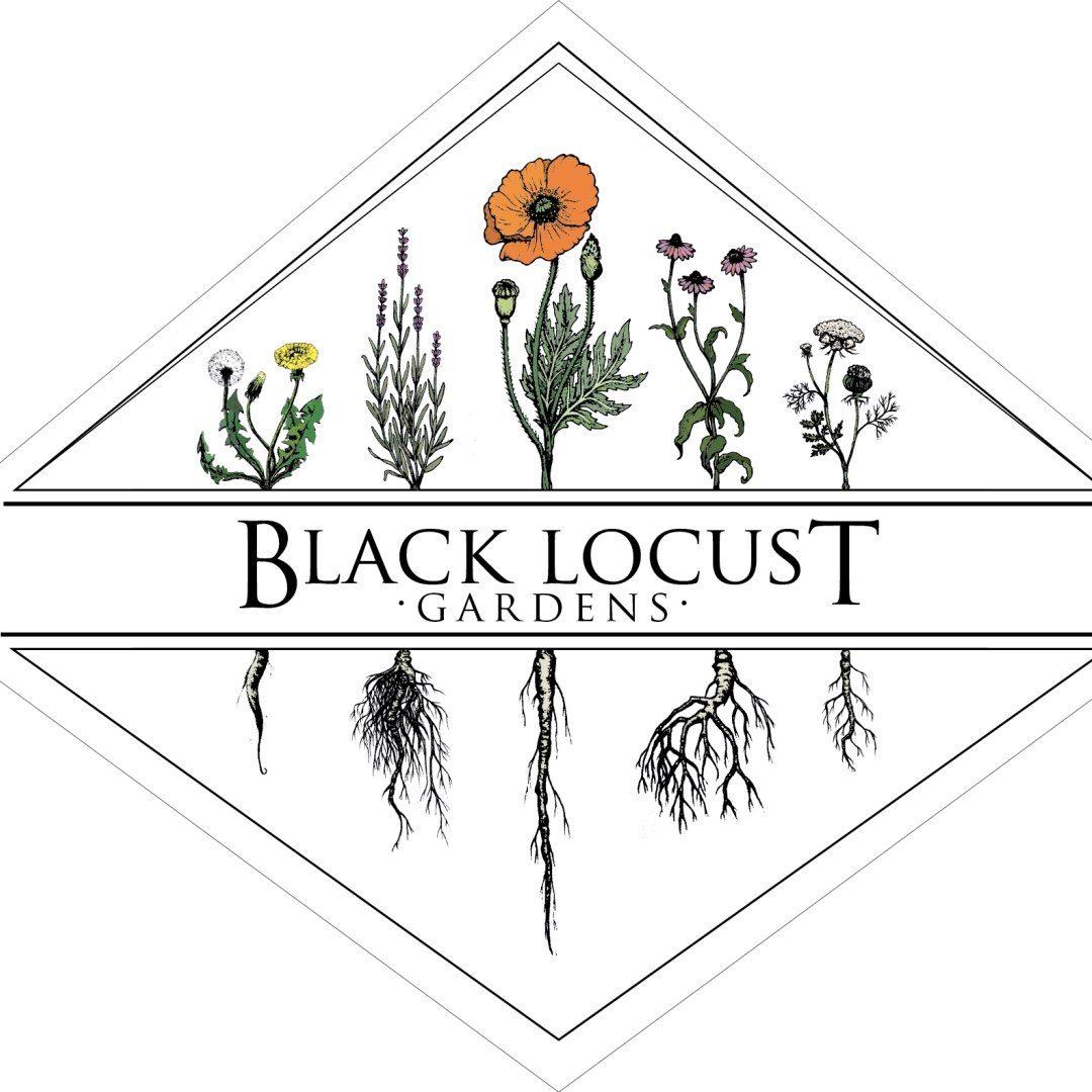 BLACK LOCUST GARDENS HERBS